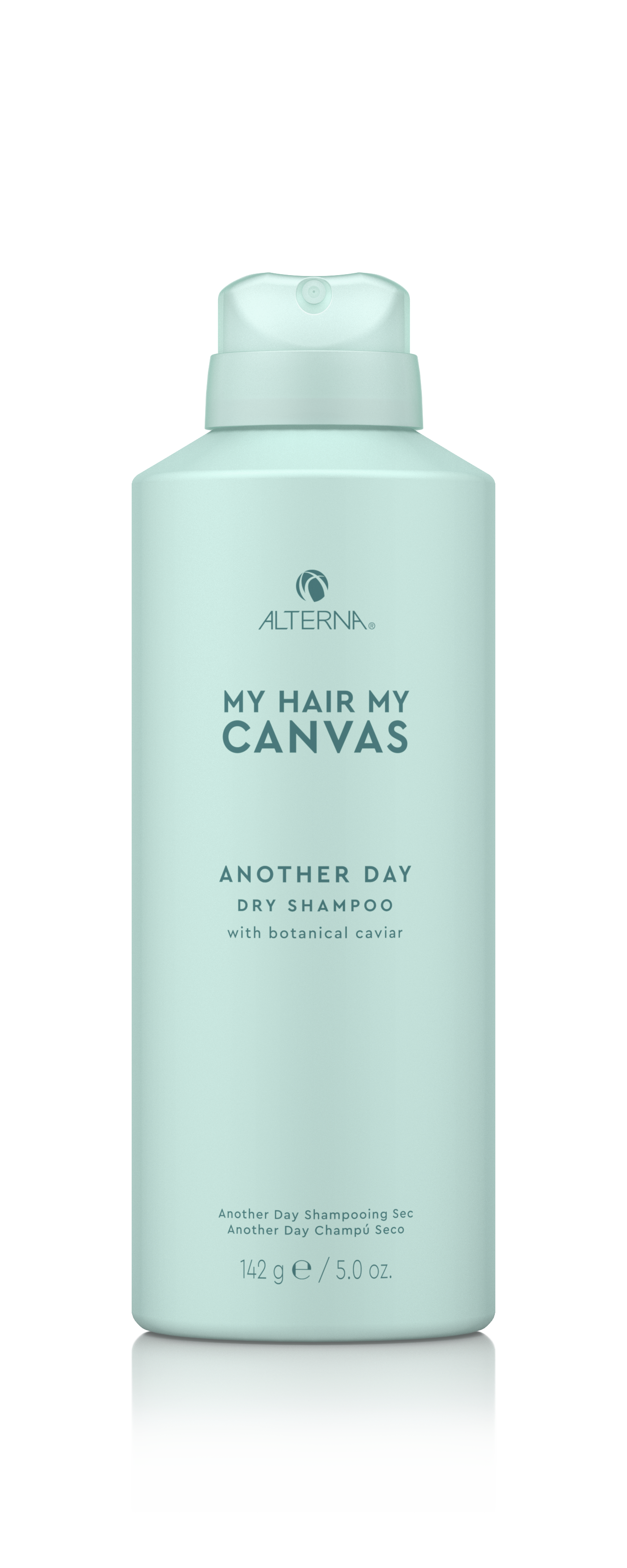My Hair. My Canvas. Another Day Dry Shampoo