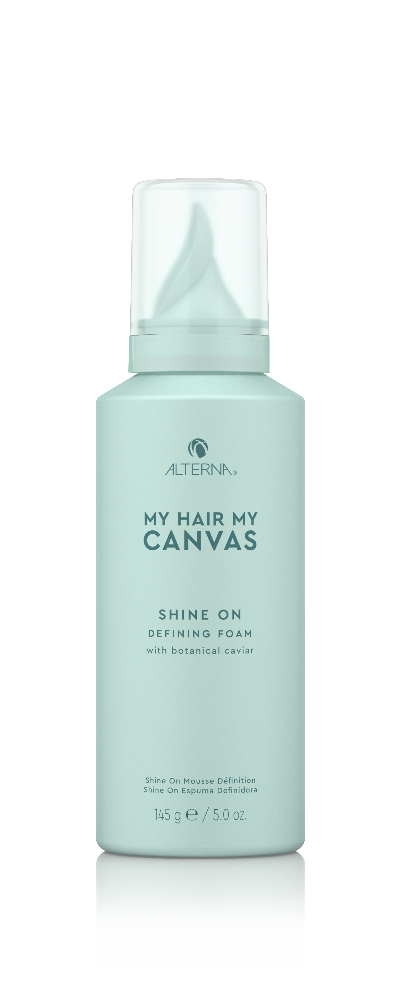 My Hair. My Canvas. Shine On Defining Foam